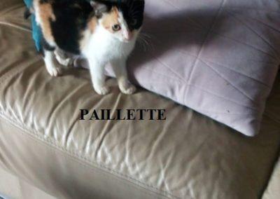 PAILLETTE-2-576x1024