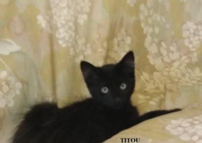 TITOU-2-1024x768